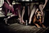 wa11papers-ru_animals_1600x1200_055