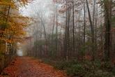 Wa11papers.ru_autumn_landscapes_1920x1080_010