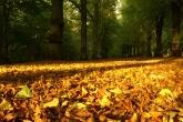 Wa11papers.ru_autumn_landscapes_1920x1200_003