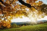 Wa11papers.ru_autumn_landscapes_1920x1200_005
