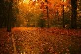 Wa11papers.ru_autumn_landscapes_1920x1200_013