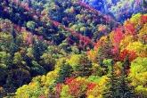 Wa11papers.ru_autumn_landscapes_1920x1200_016