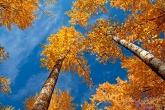 Wa11papers.ru_autumn_landscapes_1920x1200_019