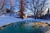 Wa11papers.ru-cities_winter-15-12-2013_1920x1080_039