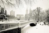 Wa11papers.ru-cities_winter-15-12-2013_1920x1200_023