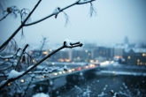 Wa11papers.ru-cities_winter-15-12-2013_1920x1200_025