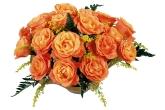 Wa11papers.ru_flowers_1920x1200_047