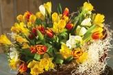 Wa11papers.ru_flowers_1920x1200_067