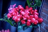 Wa11papers.ru_flowers_2856x2000_089