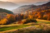 Wa11papers.ru_11_2020_nature_1920x1080_027