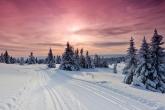 Wa11papers.ru_11_2020_nature_1920x1080_028