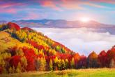Wa11papers.ru_11_2020_nature_1920x1080_060