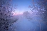 Wa11papers.ru_11_2020_nature_1920x1200_086