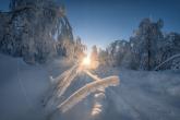 Wa11papers.ru_11_2020_nature_1920x1200_087