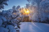 Wa11papers.ru_11_2020_nature_1920x1280_103