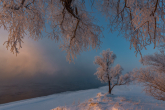 Wa11papers.ru_11_2020_nature_2500x1669_142