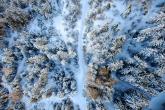 Wa11papers.ru_11_2020_nature_3200x2400_171