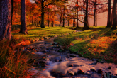 Wa11papers.ru_11_2020_nature_3600x2400_172