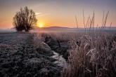 Wa11papers.ru_11_2020_nature_3600x2400_180