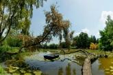 Wa11papers.ru_nature_1920x1200_180