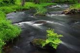 wa11papers-ru_nature_1680x1050_014