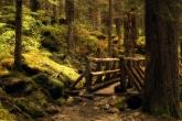 wa11papers-ru_nature_2560x1600_017