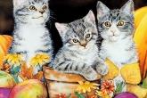Wa11papers.ru_painting_1280x1024_014