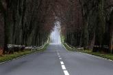 Wa11papers.ru_roads_1920x1200_043