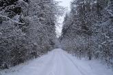 Wa11papers.ru_roads_1920x1200_058