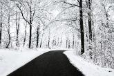 Wa11papers.ru_roads_2560x1600_081