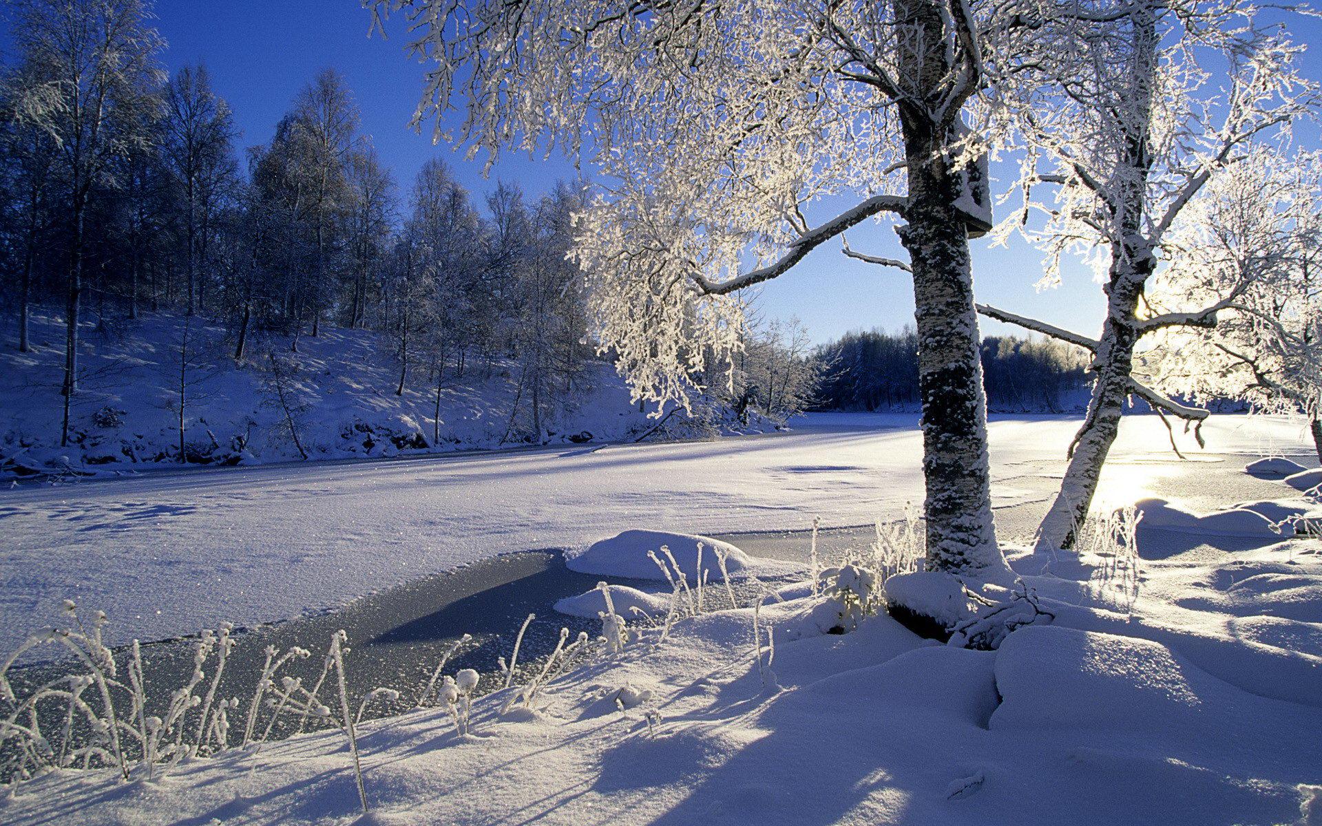 Wa11papers.ru_Winter_1920x1200_197