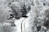 Wa11papers.ru_Winter_1920x1080_159
