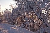 Wa11papers.ru_Winter_1920x1080_161