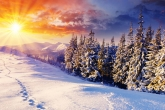 Wa11papers.ru_Winter_1920x1080_182