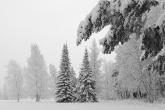 Wa11papers.ru_Winter_1920x1200_056