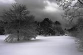 Wa11papers.ru_Winter_1920x1200_091