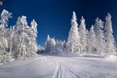 Wa11papers.ru_Winter_1920x1200_108