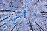 Wa11papers.ru_Winter_1920x1200_109