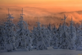 Wa11papers.ru_Winter_1920x1200_111