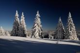 Wa11papers.ru_Winter_1920x1200_112