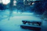 Wa11papers.ru_Winter_1920x1200_147