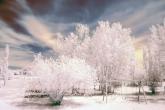 Wa11papers.ru_Winter_1920x1200_165