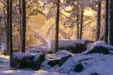 Wa11papers.ru_Winter_1920x1200_169