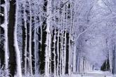 Wa11papers.ru_Winter_1920x1200_185