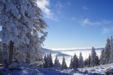 Wa11papers.ru_Winter_1920x1200_191
