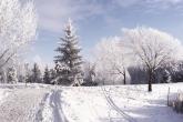 Wa11papers.ru_Winter_1920x1200_205