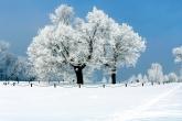 Wa11papers.ru_Winter_1920x1200_206