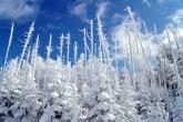 Wa11papers.ru_Winter_1920x1200_215