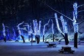 Wa11papers.ru_Winter_1920x1200_217