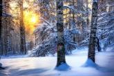Wa11papers.ru_Winter_1920x1250_220